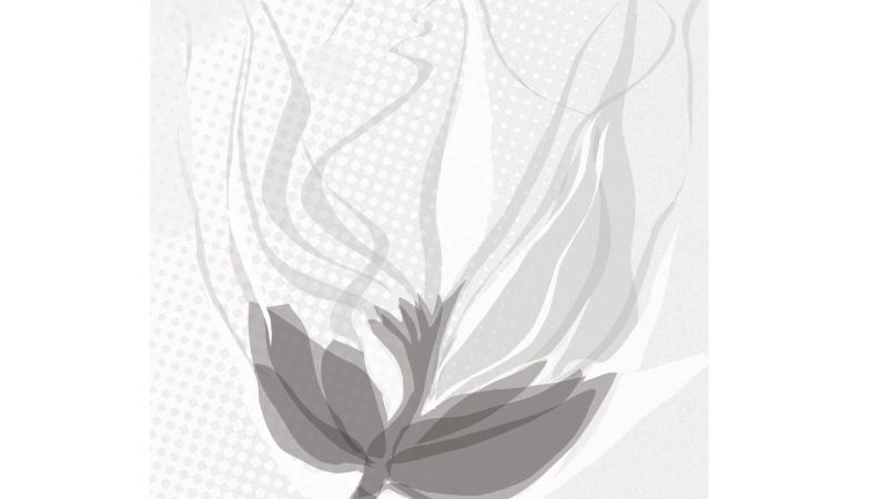 Ilustração – 36